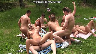 Lots of drunk pale chicks please strong fat cocks at the picnic party